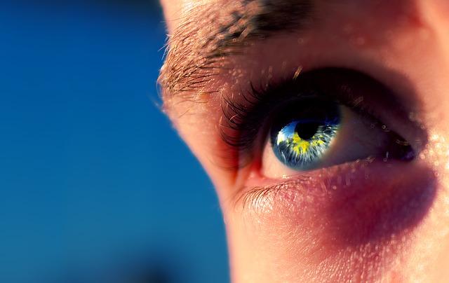 b1b457157a El ojo, como cualquier órgano, debe ser cuidado para que no haya problemas  con los años. Una buena alimentación y hacer vida sana es importante para  tener ...